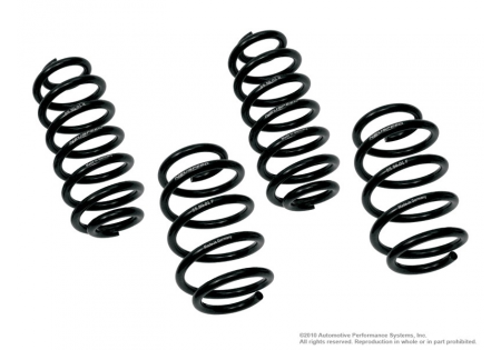 Neuspeed Race Springs